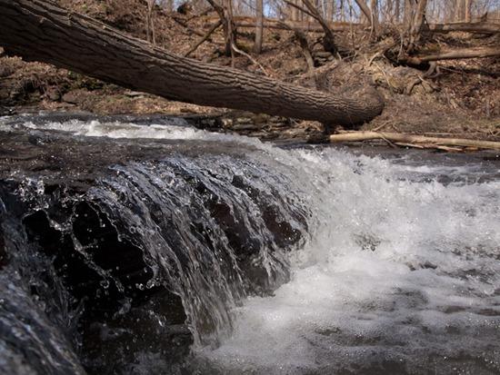Gibbonsville Falls - 04.03.2010 - 09.16.32