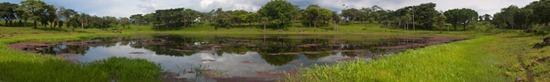 Wetland 3 - 06.30.2010 - 14.44.54_stitch