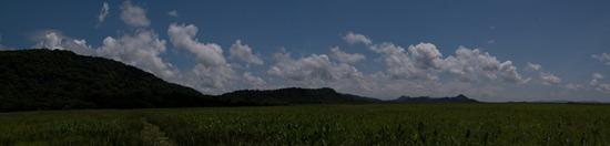 Wetland to Birding Tower - 09.18.2010 - 12.03.36_stitch