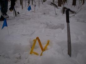 Peter Euclide's winter decomposition - 12.22.2010 - 11.54.11-1
