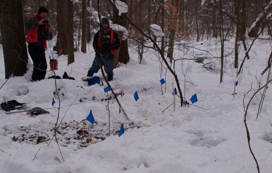 Peter Euclide's winter decomposition - 12.22.2010 - 12.14.32-1