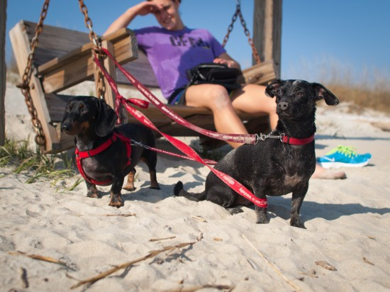 Tybee Island with Amos and Eva - 20130112 - 10