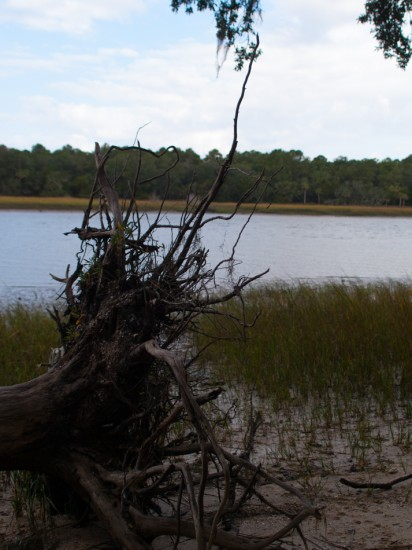Skidaway Island State Park with Amos - 10.25.2012 - 08.00.52