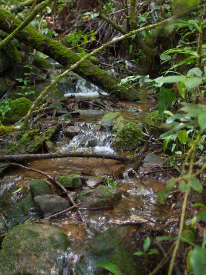 Las Alturas Streams - 20130705 - 8